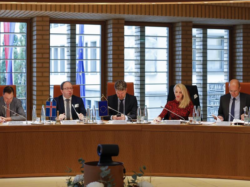 Der isländische Vorsitzende sowie die Delegation des Europäischen Parlaments (Foto: Paul Trummer)